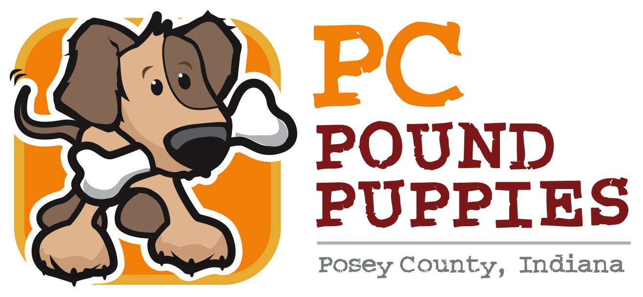 PC Pound Puppies Meet Our Dogs